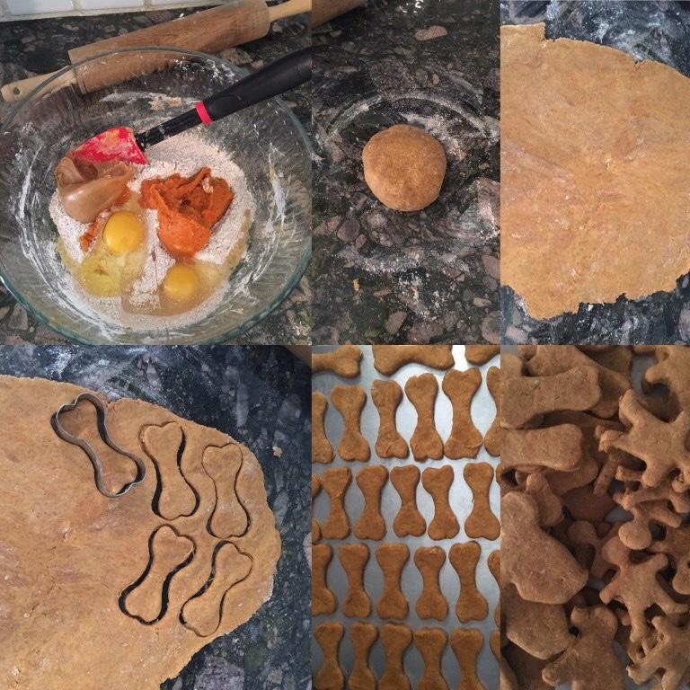 Peanut Butter Pumpkin Treats Paws Give Me Purpose